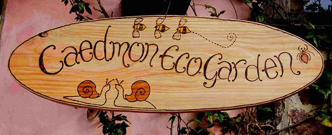 Signs : Wooden Garden Signs : Oval Wooden Garden Sign - Bugs Design