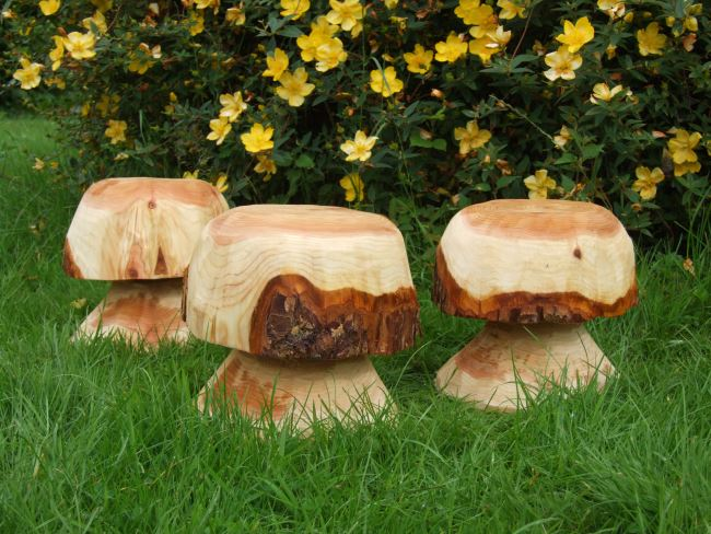 Garden Sculpture : Wooden Mushrooms and Toadstools (Sculptural) : Button Mushrooms