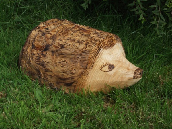 Ornamental Hedgehog