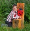 Story Telling Chair with Ladybug Design